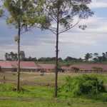 Mbuye Campus 2