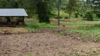 April 2018 mbuye farm school
